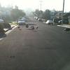 Neighborhood turkeys, Jan 2011