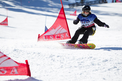 Snowboard GS