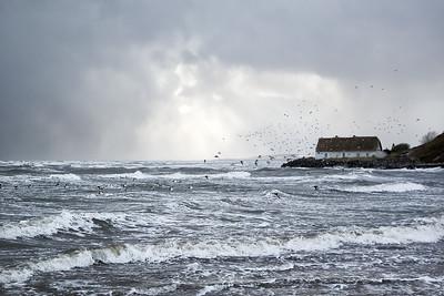 Choppy Seas at Laytown-1L8A1191