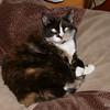 04 5831 Kally Kitty Oct 19 2004
