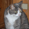 24 1976 Snickers Jan 26 2008