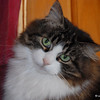 56 0521 Squirt Jan 23 2010