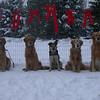 18 1451 Christmas Pic  Nov 19 2002