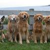 16 1074 Lazyriver Family Portrait  Aug 22 2002