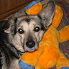 10 0009 Boomer  Feb 3 2002