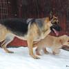 19 9512 Solo Sandi Feb 20 2009