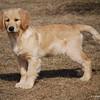 49 D0196 Sandi Mar 28 2009