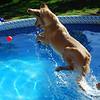 85 DSC_4418 Sandi Sasha Sept 26 2009
