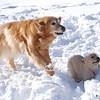 16 9157 Sasha Sandi Feb 8 2009