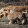 47 D0187 Sandi Slammer Mar 28 2009
