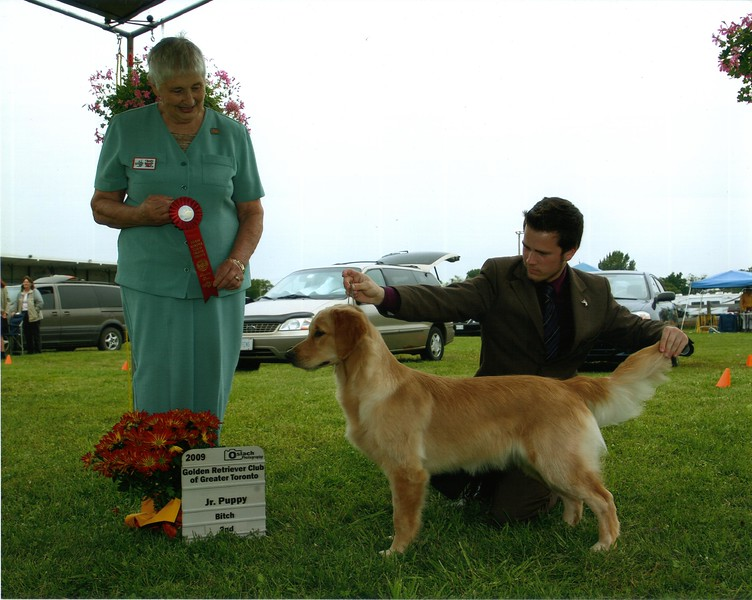 72 DSC_2878 Sandi Jr Puppy 2nd Aug 8 2009