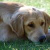 80 DSC_3986 Sandi Sept 6 2009