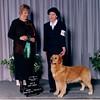 10 6 Montreal GRCQ Best In Puppy Sweeps  Nov 28 1998