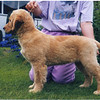 09 Sasha stack July 5 1998