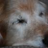 537 3777 Sasha June 2 2011