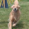 87 5332 Sasha  July 18 2004 crop