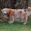 304 DSC_6135 Sasha Nov 29 2009