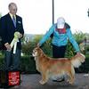 223 7126 Sasha Renee-Claude 3rd GRCA Vet Sept 26 2008