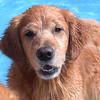 203 5680 Savanah Sept 22 2007