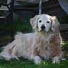 345 4517 Shawnee May 25 2008