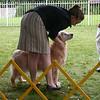 210 D1270 Emily Shawnee July 22 2006