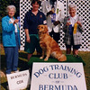 Shawnee got her Bermuda CD and CDX both during our week in Bermuda - November 1996