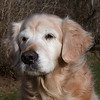 239 D3378 Shawnee Dec 25 2006