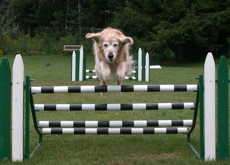 135 7675 Shawnee jump Aug 16 2005 crop