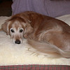 She loved her new bed - October 29, 2003