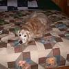 236 D3231 Shawnee Dec 4 2006