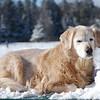 308 2663 Shawnee Feb 14 2008