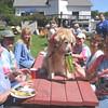 149 Shawnee-Sweetest-Dog