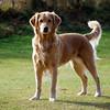 157 DSC_5374 Shayla Nov 10 2009