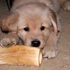 11 1969 Shayla bone  Mar 7 2003