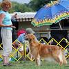 207 4289 a Barb Skylar Aug 6 2011 crop