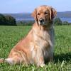 76 5626 Skylar Sept 19 2007 crop