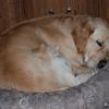 100 1773 Slammer Jan 19 2008