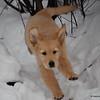 54 1614 Stormy Jan 6 2008