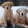 75 2495 Stormy Shawnee Feb 9 2008