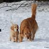 56 1711 Stormy Savanah Jan 17 2008