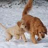 57 1712 Stormy Savanah Jan 17 2008