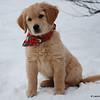 52 1549 Stormy Jan 6 2008