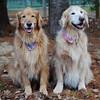 102 6903 Cassidy Roxy Nov 13 2011