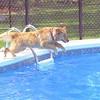 20 4276 Mia July 26 2004