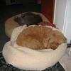 75 IMG_0268 Nov 2 2005