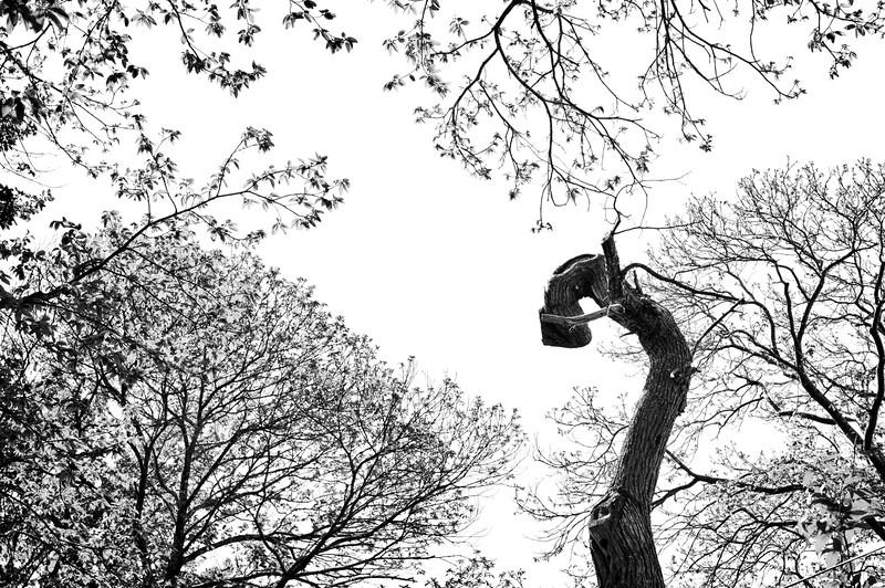 Défaite - Pascal Quignard