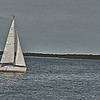 Les voiles des bateaux - Bernard Dimey