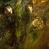 Même pas honte - A Mourad, Florent et Olivier - Loïc Lantoine