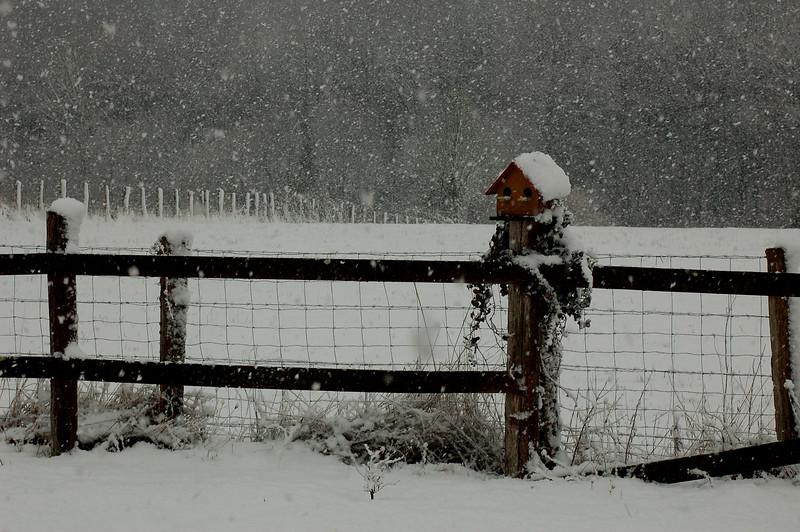 Il neige - Allain Leprest