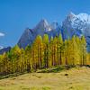 Prisojnik versante nord - foto n° 231015-587570